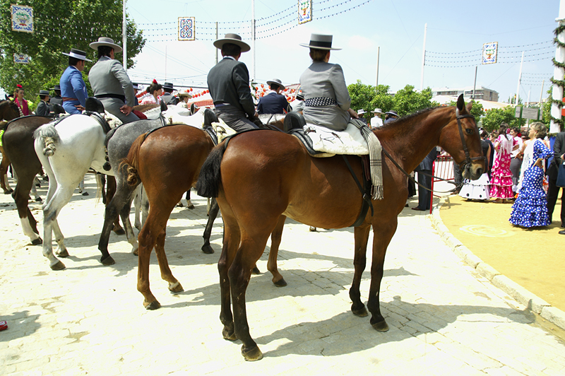 Riders in Seville - April Fair | MarinaReservation.com