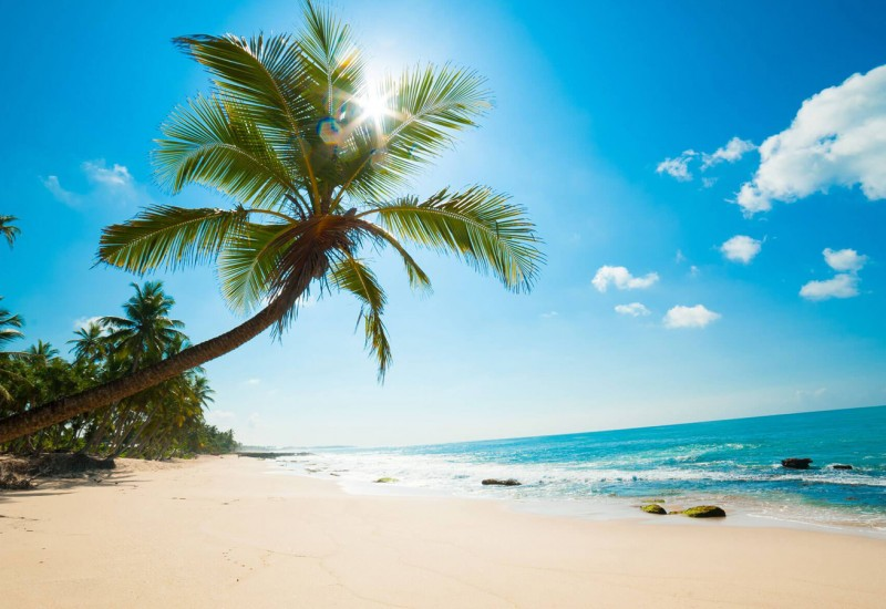 holiday planning in the caribbean islands