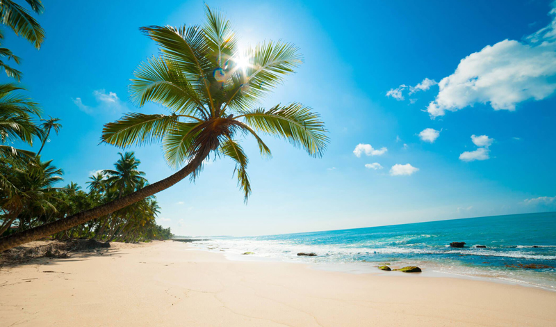 Plan your holiday in Guadelupe