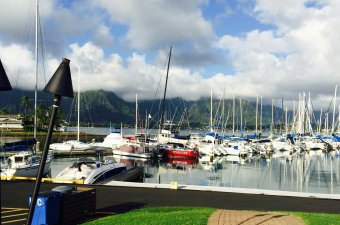 Haleiwa Yacht Club,LLC
